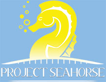 Project Seahorse Logo